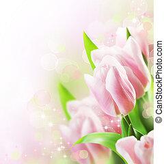 tulipes, frontière, conception, printemps