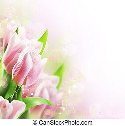 tulipes, printemps, frontière, conception