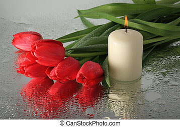 Tulips and a candle. In memory of the dead.