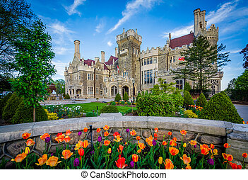 Tulips and Casa Loma in Midtown Toronto, Ontario.