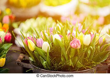 Tulips at flower market