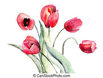 tulips, bonito, flores