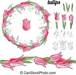 tulips, differente, set, white.