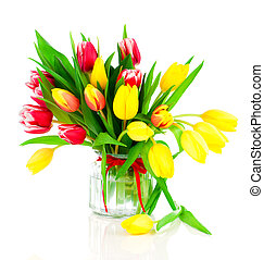 tulips flowers on a white background
