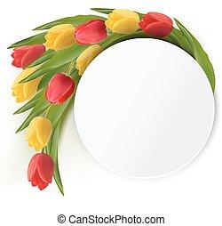 tulips, giallo, fondo., vettore, vacanza, rosso