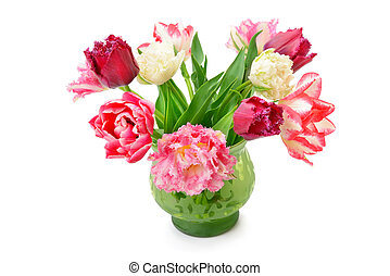 Tulips in a flower vase isolated on white background.