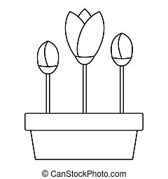 Tulips in planter icon, outline style