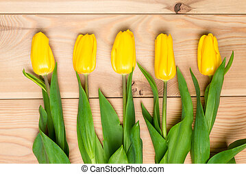 Tulips laid in a row on the wooden floor