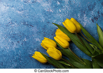 Tulips on a blue background