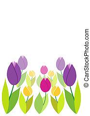 tulips, primavera, verde, bokeh., fondo.