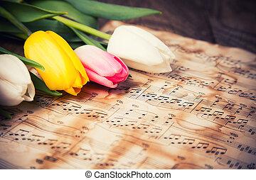 tulpaner, på, a, musik antecknar, papper