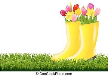 tulpen, gras, grün, gumboot