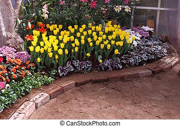 tulpen, zijn, gegroeid, en, exquisite., parken