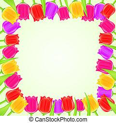 tulpenblüte, hell, quadrat, rahmen, bunte