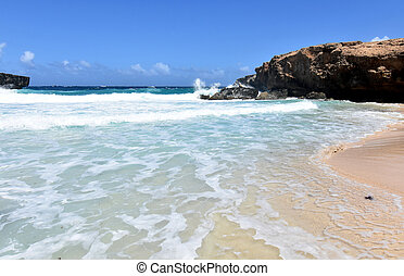 Tumultuous Waves Rolling On to the Shore in Aruba