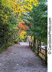 Tumwater Falls Park Path