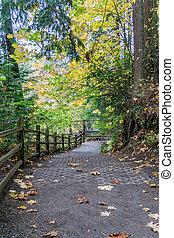 Tumwater Falls Park Trail