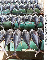 Tuna fish at a market