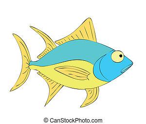 tuna - fish, tuna,colorful, sea, lake, fishing, aquarium,...