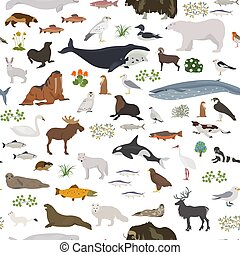 Tundra biome. Terrestrial ecosystem world map. Arctic...