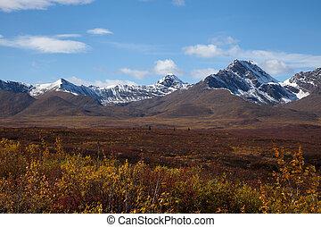 Tundra in Fall - Wilderness of Alaska tundra in late fall...
