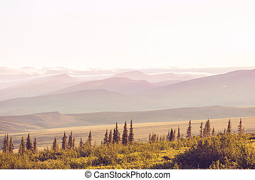 Tundra landscapes above Arctic circle in Canada. Beautiful...