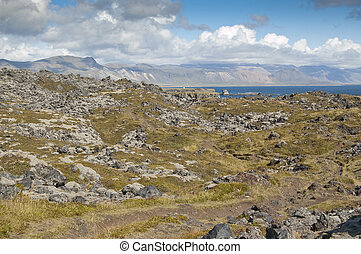 Volcanic landscape covered by tundra next to sea (Arnarstapi, Iceland)