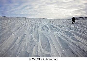 tundra., schneebedeckt
