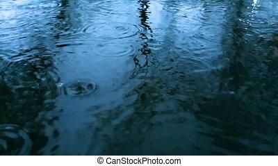 tung, vatten, skott, närbild, regna