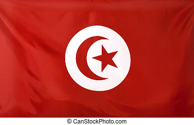 Tunisia Flag real fabric seamless close up with wind waves