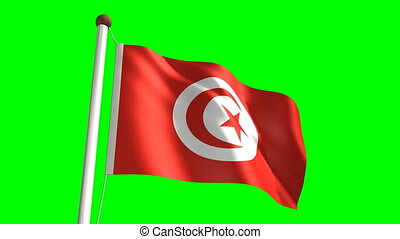 Tunisia flag video