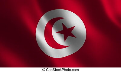 Tunisia flag waving 3d. Abstract background. Loop animation....