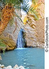 tunisia, nefta, oasi, -, chebika