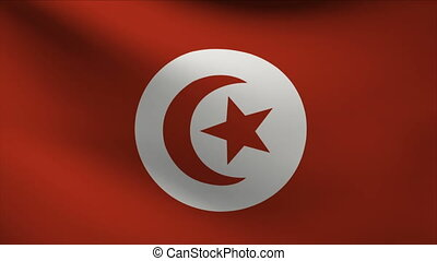 tunisia flag waving gently in wind