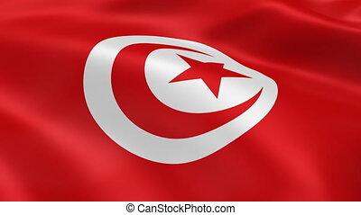 Tunisian flag waving in the wind