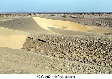 tunisie, désert, sahara