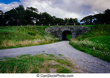 Tunnel on a trail at Moses Cone Park, along the Blue Ridge Parkw