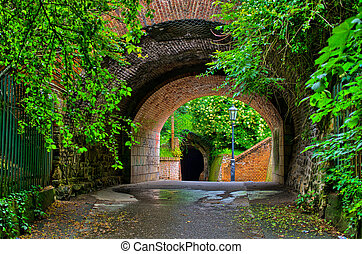 tunnel, vecchio, giardino