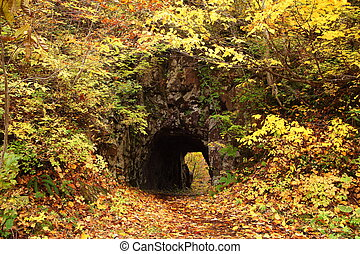 Old tunnel with autum leaves in the forest, Fukushima, Japan