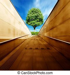 tunnlar, och, träd