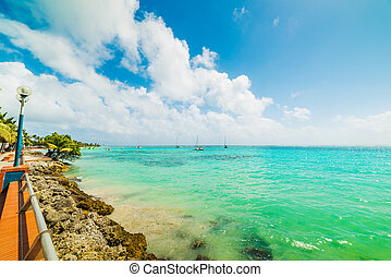 Tuquoise water and Sainte Anne beach in Guadeloupe, French west indies. Lesser Antilles, Caribbean sea