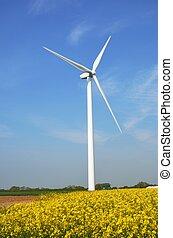 turbina del viento, en, granja
