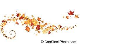 turbine, foglie, acero