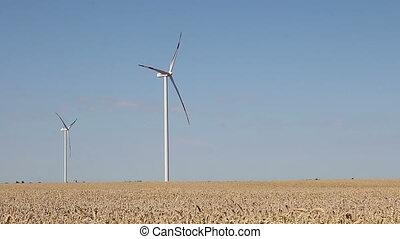 turbines, blé, paysage, vent, champ