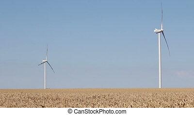 turbines, blé, vent, champ