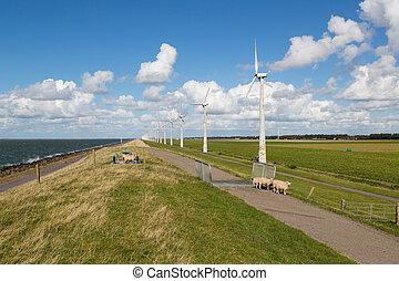 turbines, wind, nederland, zee, schaap