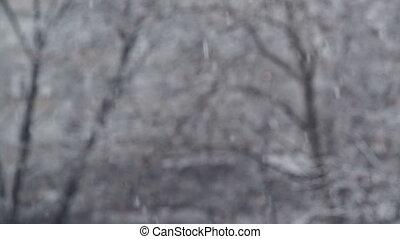 Turbulent snowfall detail in park