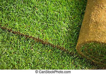 Turf grass roll background - Green turf grass roll closeup ...