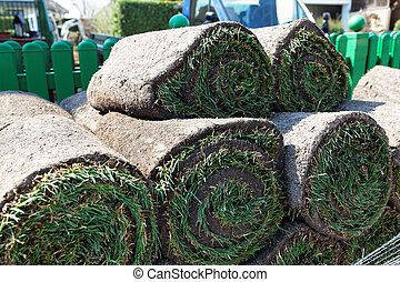 turf is laid by gardener - gardeners lay a rolling lawn in a...
