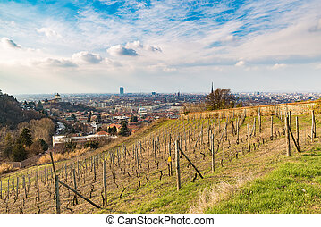 Turin cityscape, Torino, Italy at sunset, panorama from vineyard. Scenic colorful light and dramatic sky.